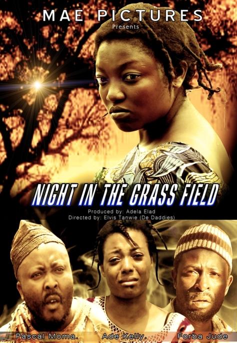 night-in-the-grass-field-lefilmcamerounais-7