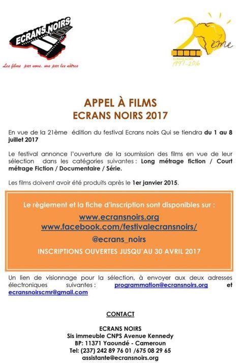appels-a-films-ecrans-noirs-2017-lefilmcamerounais-8