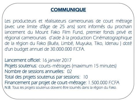mount-fako-film-fund-cameroun-lefilmcamerounais-2