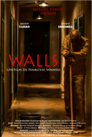 WALLS- maisons-productions-Le-fil-camerounais-1
