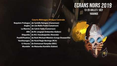 courts-metrages-afrique-centrale-ecrans-noirs-2019-lefilmcamerounais